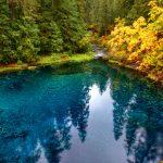 Unidentified Male Hiker - Willamette National Forest